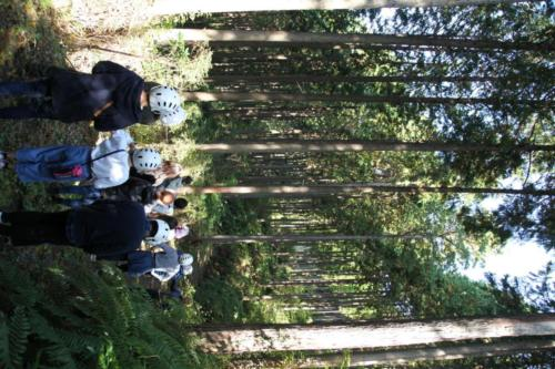 fujikawa beer camp 1 1 6