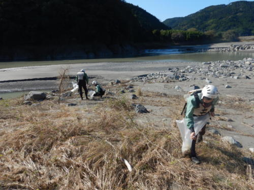 fujikawa beer camp 2 2 1 84