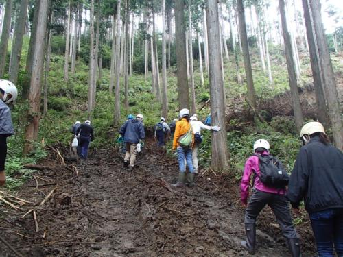 kanbatsu beer brewing for nature 1 104