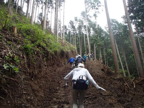 kanbatsu beer brewing for nature 1 107