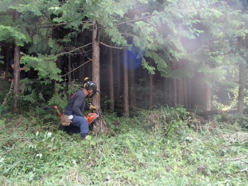 kanbatsu beer brewing for nature 1 180