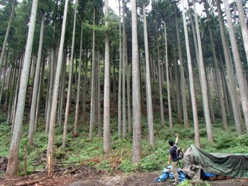 kanbatsu beer brewing for nature 1 95